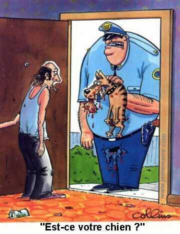 Dessin Humoristique Chien est-ce-votre-chien - dessin humoristique.